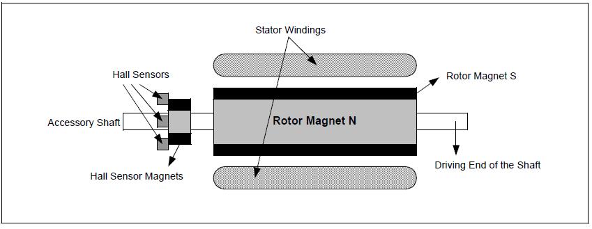 Cấu tạo động cơ Brushless của Microchip