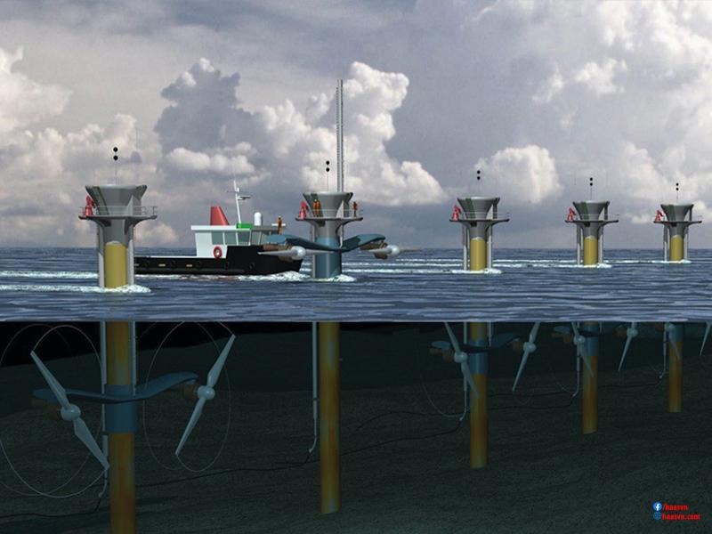 năng lượng sóng biển tại Việt Nam