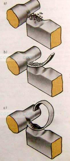 Hình 3: Các dạng phoi